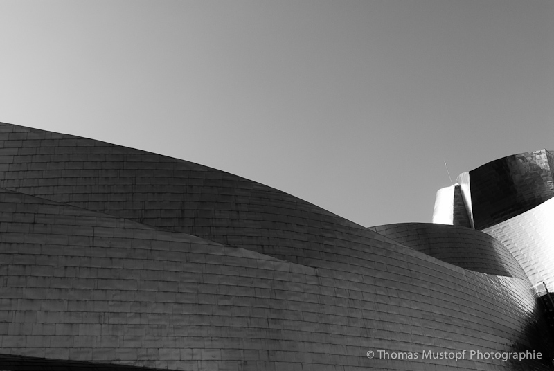 Linien & Formen / Lines and shapes #1