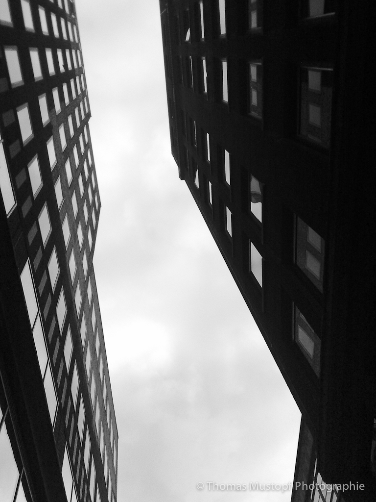 lines_in_the_city_30092010299