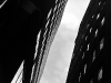 lines_in_the_city_30092010298